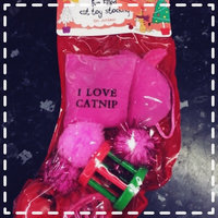 Grreat ChoiceA Pet HolidayTM 11-Pack Stocking Cat Toys uploaded by Marissa G.