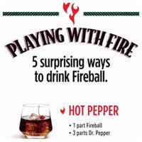 Fireball Cinnamon Whisky uploaded by Nassim N.