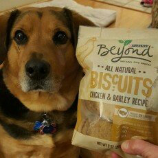 Purina Beyond All Natural Biscuits Chicken & Barley Recipe Dog Snack 9 oz. Pouch uploaded by Elizabeth d.