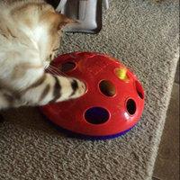 KONGA Glide 'N Seek Cat Toy uploaded by Liz S.