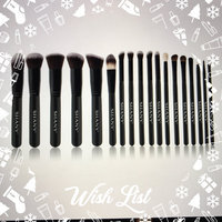 SHANY Artisan's Easel - Standing Brush Storage with 18 Professional Brushes uploaded by Aliza B.