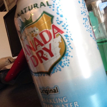 Photo of Canada Dry Original Sparkling Seltzer Water uploaded by David F.