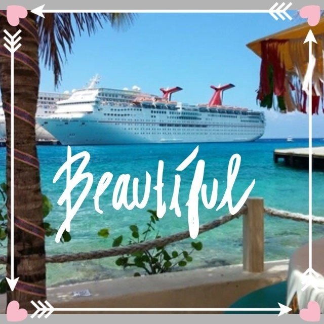 Carnival Cruise Line uploaded by Danielle P.