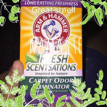 Photo of ARM & HAMMER™ Fresh Scentsations™ Carpet Odor Eliminator  Island Mist uploaded by Joanna G.