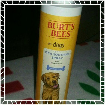 Photo of Burt's Bees Burts Itch Soothing Dog Spray uploaded by Stephanie W.