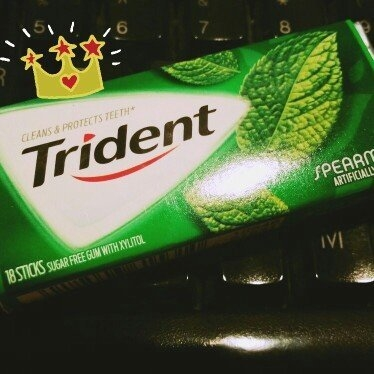 Trident Spearmint Sugar Free Gum uploaded by Erin H.