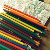 Crayola Colored Pencils, 100-Count uploaded by Perla V.
