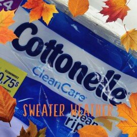 Photo of Cottonelle Clean Care Toilet Paper uploaded by Joeline T.