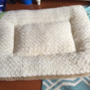 Photo of Top Paw Double Orthopedic Pet Bed uploaded by Allysa B.