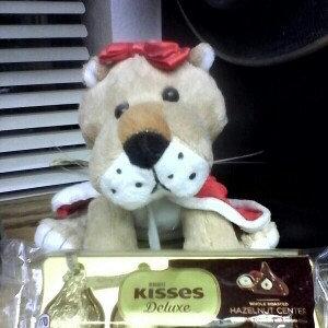 Photo of Hershey's Kisses Whole Roasted Hazelnut Center uploaded by Jennifer M.