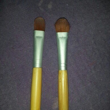 Ecotools Makeup Brushes  uploaded by Shane A.