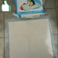 Boots & Barkley Puppy Pads 100 ct uploaded by hazel l.