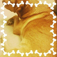Four Paws Magic Coat Natural Oatmeal Shampoo uploaded by Mercedes R.