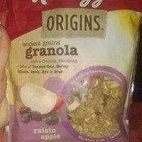Kellogg's Origins™ Ancient Grains Granola Raisin Apple Cereal 12.5 oz. Bag uploaded by Shanell B.