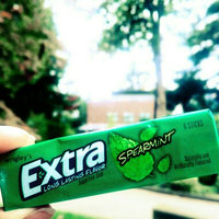 Extra Spearmint Sugar-Free Gum uploaded by Hershey L.