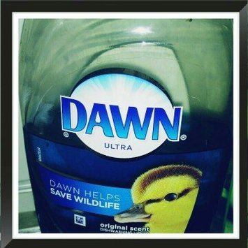 Dawn Ultra Concentrated Dish Liquid Original uploaded by Lindsey K.