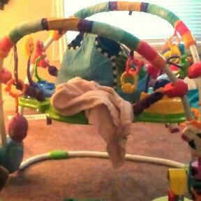 Photo of Baby Einstein Jumper - Neighborhood Friends uploaded by Christine K.