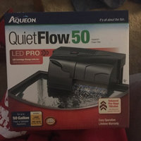 Aqueon Supplies Aqueon QuietFlow 50 Power Filter - Up to 50 gal. uploaded by Claire M.