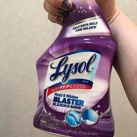 Lysol® Bleach & Shine Mold & Mildew Blaster 28 fl. oz. Bottle uploaded by Tamara E.