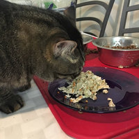 Hill's Science Diet Cat Food  uploaded by Shelby B.