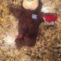 Kong Wild Knots Small-Medium Bear NKR3 uploaded by Robyn E.