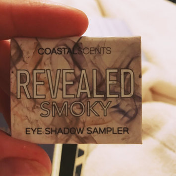 Coastal Scents Revealed Smoky Palette uploaded by Paige H.