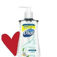 Renuzit 00213 Antibacterial Hand Sanitizer with Moisturizers 16 oz Pump Fragrance-Free uploaded by Suelen C.