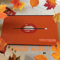 MAKE UP FOR EVER 15 Artist Shadow Palette uploaded by Genny E.