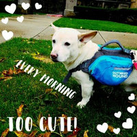Outward Hound Quick Release Dog Backpack uploaded by Suzanne M.