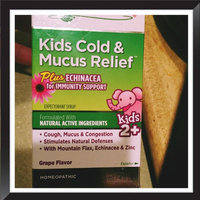 Similasan Kids 2-12 Cold and Mucus Relief Cough Expectorant Syrup uploaded by Nancy C.