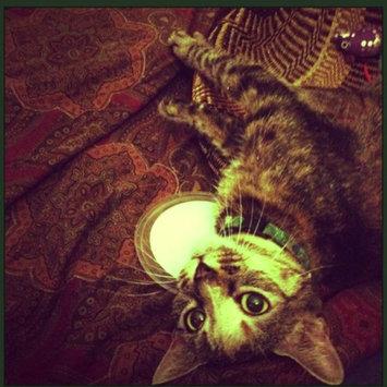 Photo of 8 in 1 Pet Products Kookamunga Catnip Tub: 1 oz uploaded by Audrey C.