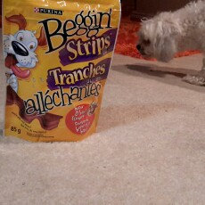 Photo of Purina Beggin' Strips Bacon & Beef uploaded by Luzviminda G.