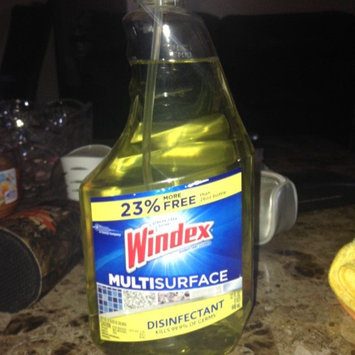 Photo of Windex® Antibacterial Multi-Surface Cleaner 32 fl. oz. Bottle uploaded by Tyjuana M.
