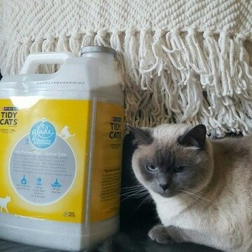 Purina Tidy Cats Clumping Cat Litter with Glade Tough Odor Solutions uploaded by Dawn R.