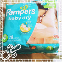 Pampers Baby Dry Diapers uploaded by Marlena J.