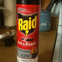 Raid Ant & Roach Killer uploaded by Tiffany N.