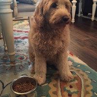 Nutrish Dish Chicken & Brown Rice Recipe uploaded by Kim N.