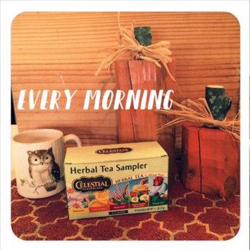 Celestial Seasonings Herbal Tea Sampler Caffeine Free Herbal Tea - 18 CT uploaded by Kaitlyn B.