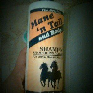 Photo of Original Mane 'n Tail Shampoo uploaded by Amy S.