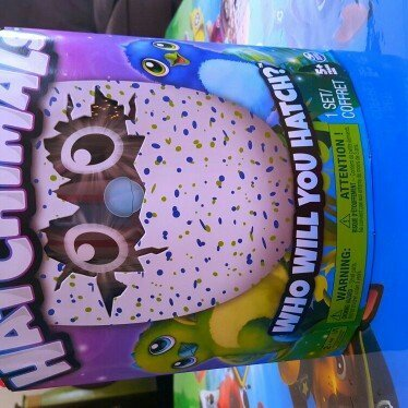 Spin Master Hatchimals Draggles Blue/Purple Egg - One of Two Magical Creatures Inside uploaded by Jessica R.