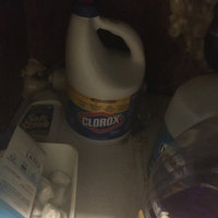 Clorox 2 Stain Fighter and Color Booster Detergent Powder Box uploaded by Deborah P.