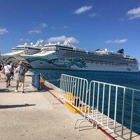 Norwegian Cruise Line uploaded by member-7c43d16f2