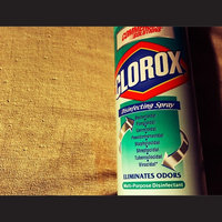 CLOROX Disinfectant Spray, 19 oz. Aerosol 12/carton uploaded by Elsie R.
