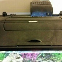 Perfecto Manufacturing Led Aquarium Hood in Black uploaded by Lauren J.