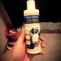 Pro-Sense Itch Relief Hydrocortisone Shampoo For Dogs uploaded by Jennifer F.
