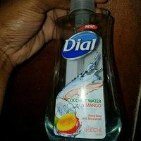Dial Liquid Hand Soap Refill uploaded by LaKita L.