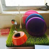 Boon Lawn Countertop Drying Rack uploaded by Celeste W.