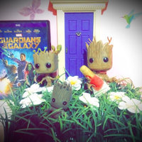 Guardians of Galaxy Dancing Groot Pop! Vinyl Bobble Figure uploaded by Blythe S.