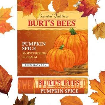 Burt's Bees Lip Balm uploaded by Breyanna W.