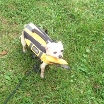 Photo of Outward Hound Dog Lifejacket uploaded by Susan B.